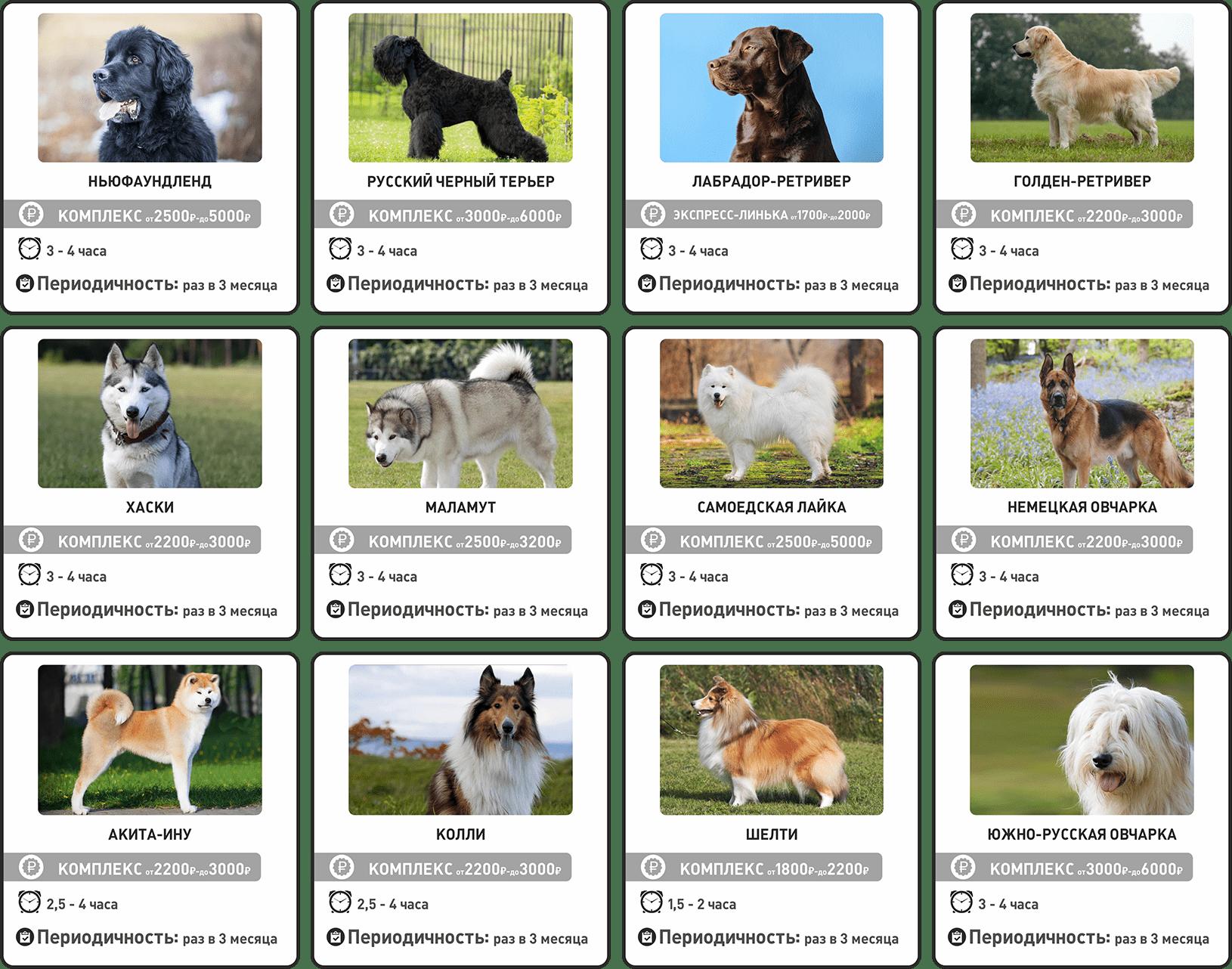 Прайс-лист на груминг собак крупных пород