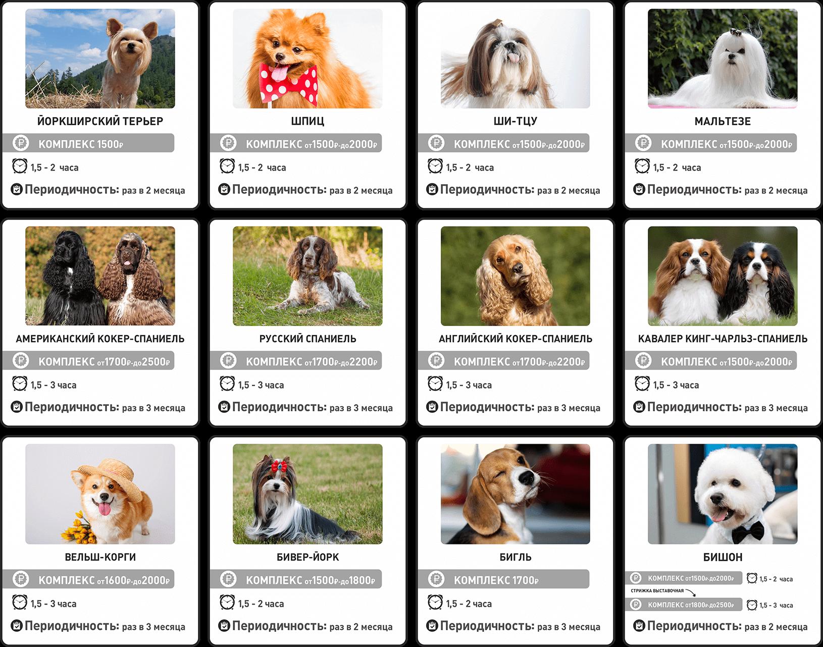 Прайс-лист на груминг собак мелких пород — часть 1
